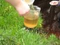Wasserprobe